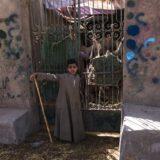 Barqash Camel Market